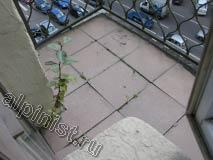 Сейчас, Вы видите пол одного из балконов, который облицован керамической плиткой, со временем расшивка между плитками потрескалась, и оттуда стали расти кусты.